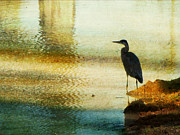 Wading Bird Prints - The Lonely Hunter II Print by Amy Tyler