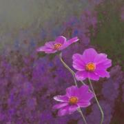 Cosmos Digital Art Acrylic Prints - The lonely wait until winter Acrylic Print by Jeff Burgess