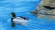 Ducks Pastels - The Lookout by Jan Amiss