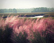 Grass Metal Prints - The Lowlands Metal Print by Amy Tyler