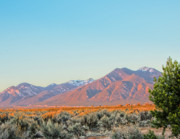 Photorealism Prints - The magic light of Taos  Print by Charles Muhle