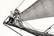 Sailing Vessel Photos - The Magic of Sail by Robert Lacy