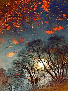 Autumn Trees Prints - The Magic Puddle Print by Tara Turner