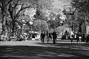 Park Benches Digital Art - THE MALL at CENTRAL PARK in BLACK AND WHITE by Rob Hans