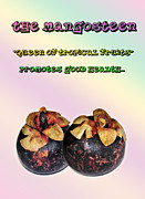 Tangy Posters - The Mangosteen - Queen of Tropical Fruits Poster by Kaye Menner