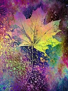 Maple Leaf Digital Art - The Maple by Tim Allen