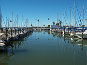 Dunedin Framed Prints - The Marina - Dunedin Florida Framed Print by Bill Cannon