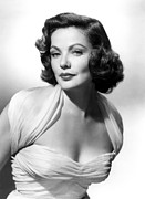 Publicity Shot Photos - The Mating Season, Gene Tierney by Everett