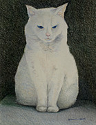 Tim Ernst - The Meditating Cat