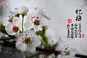 Stamps Digital Art - The memory of plum blossom by Joanna Wald