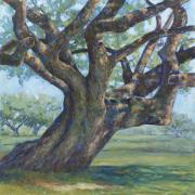 Live Oak Trees Paintings - The Mighty Oak by Billie Colson