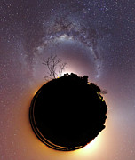 Bare Trees Posters - The Milky Way And Zodiacal Light Poster by Luis Argerich