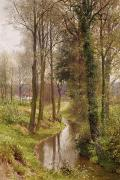 Wild Woodland Painting Metal Prints - The Mill Stream Metal Print by Henry Sutton Palmer