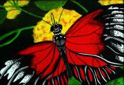 Colored Background Drawings - The monarch by Ramneek Narang