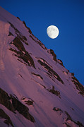 Denali National Park Posters - The Moon Rises Over A Snow-covered Poster by Bill Hatcher