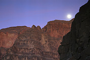 Grand Canyon Scenes Prints - The Moon Rises Over The Western Grand Print by Bill Hatcher