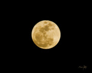 Canon 7d Prints - The Moon Print by Scott Pellegrin
