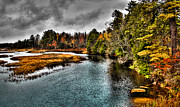 Fir Trees Photos - The Moose River in Old Forge by David Patterson