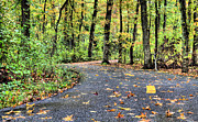 Jogging Acrylic Prints - The Mount Vernon Trail. Acrylic Print by JC Findley