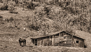 Log Cabins Framed Prints - The Mountain Retreat BW Framed Print by JC Findley