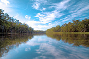 Murray Prints - The Murray River Above Renmark South Australia Print by Mark Richards