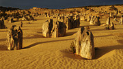Australian Landscape Prints - The Nambung Desert Print by Bob Christopher