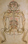 1400 Framed Prints - The Nervous System, From Mansurs Framed Print by Everett