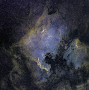 H Ii Regions Prints - The North America Nebula Print by Phillip Jones