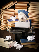 Westie Photos - The Novelist by Edward Fielding