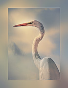 Observer Prints - The Observer Print by Stephen Warren