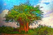 Michael Durst - The Old Baobab Tree