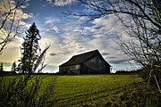 Horse And Buggy Prints - The Old Barn in the Field Print by Steve McKinzie