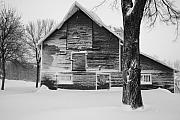 Snowstorm Art - The Old Barn by Julie Lueders