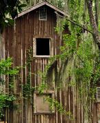 Jacksonville Florida Prints - The Old Barn Print by William Jones