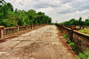 Dothan Alabama Posters - The Old Bridge to Nowhere Poster by Frank Feliciano