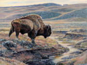 Yellowstone Painting Metal Prints - The Old Bull Metal Print by Steve Spencer