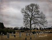 Terry Kirkland Cook - The Old Cemetary