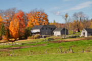The Old Farm In Autumn Print by Louise Heusinkveld