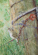 Warbler Mixed Media Metal Prints - The old gate 2 Metal Print by Paul Parsons