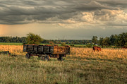 Farm Wagon Prints - The Old Hay Wagon Print by Pamela Baker