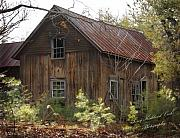 Terry Kirkland Cook - The Old House in the Woods