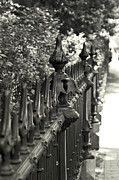 Leaetta Mitchell - The Old Iron Fence