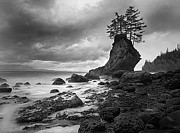 Hand Printed Photographs Framed Prints - The Old Man of the Sea - Strait of Juan de Fuca Framed Print by Nathan Mccreery
