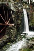 Longfellow Prints - The Old Mill Print by Renee Hong