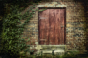 Rural Decay  Digital Art Metal Prints - The Old Red Door Metal Print by Sari Sauls