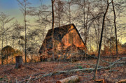 Shed Photo Originals - The Old Shack by Jason Blalock