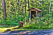 Shed Photo Posters - The Old Shed Poster by Cathy  Beharriell