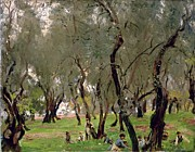 Picking Metal Prints - The Olive Grove Metal Print by John Singer Sargeant