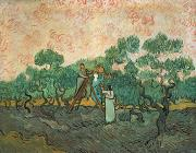 Crop Painting Prints - The Olive Pickers Print by Vincent van Gogh