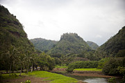 Lush Green Framed Prints - The Opening Of The Beautiful Waimea Framed Print by Taylor S. Kennedy